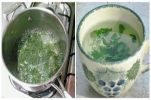 cách trị hôi nách bằng nước rau ngò